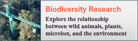 Forest Dynamics Research | Observation on the relationships between organisms and environments